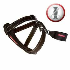 Ezydog chest plate harness size guide