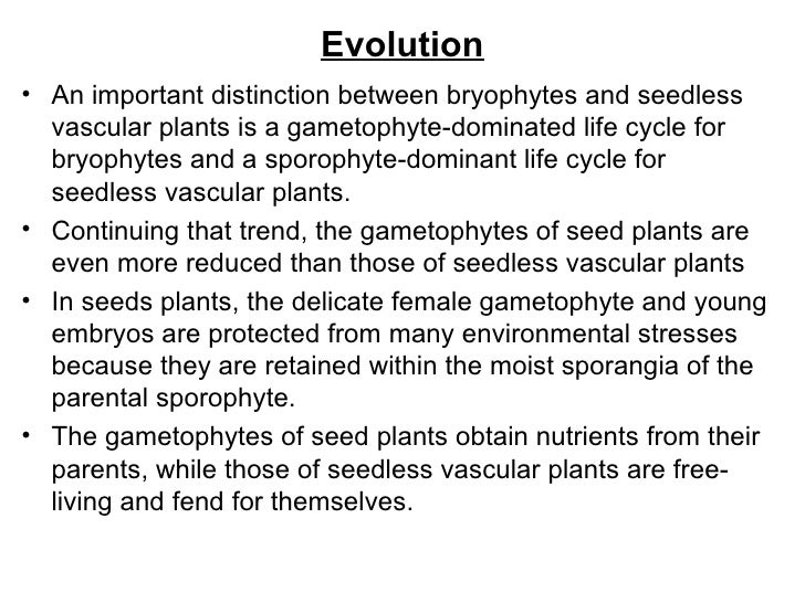 Evolution of gametophyte in bryophytes pdf
