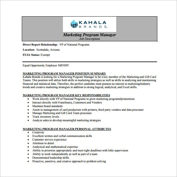 Program manager job description pdf