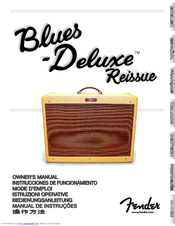 blues deluxe reissue service manual