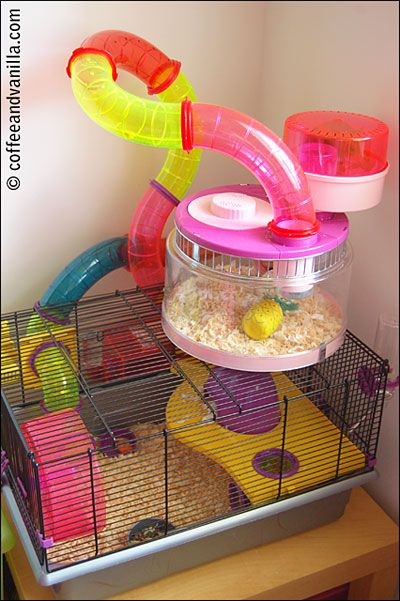 rotastak hamster cage instructions