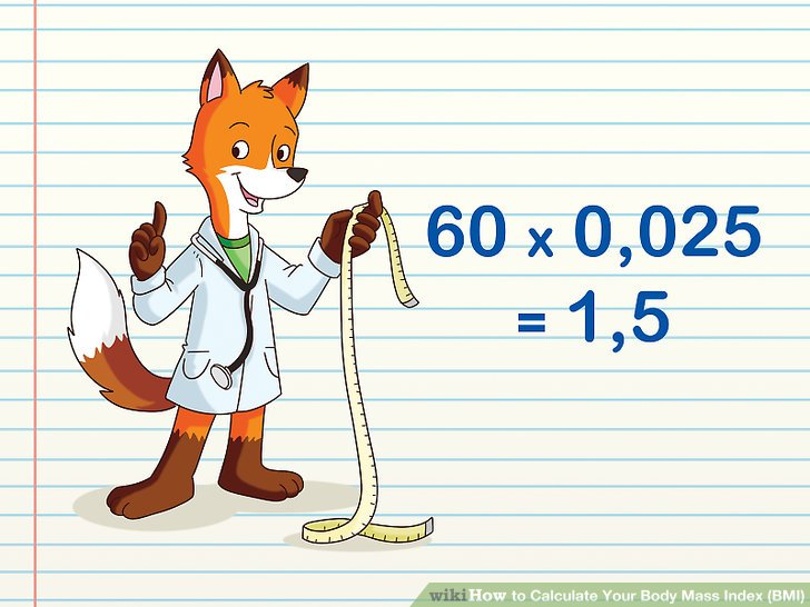 how calculate body mass index manually