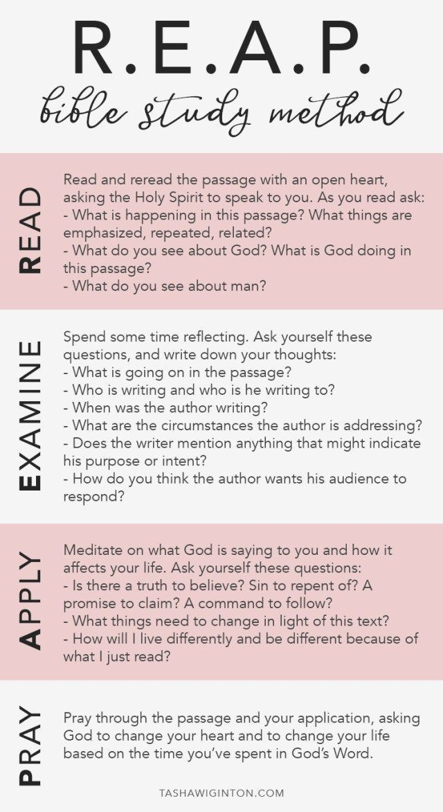 Reason for god study guide pdf