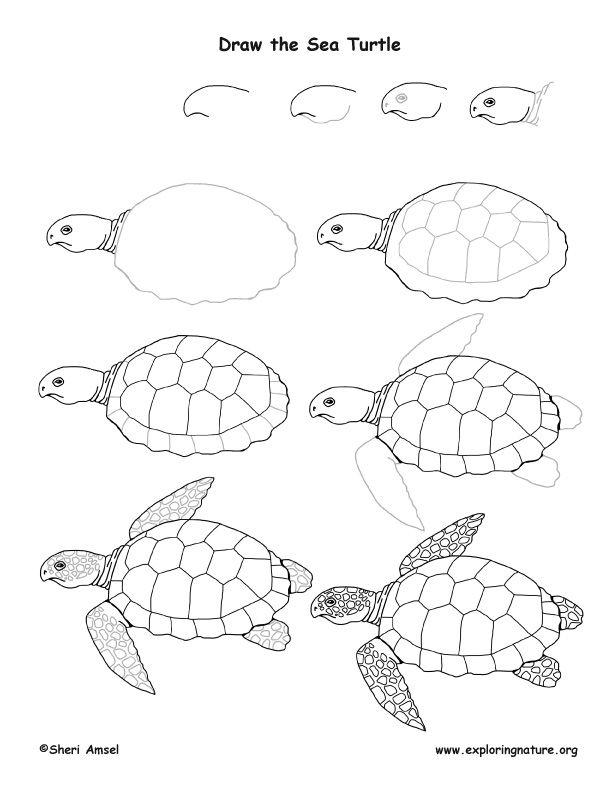 Tortoisesvn tutorial for beginners