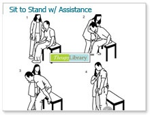 sit to stand instructions