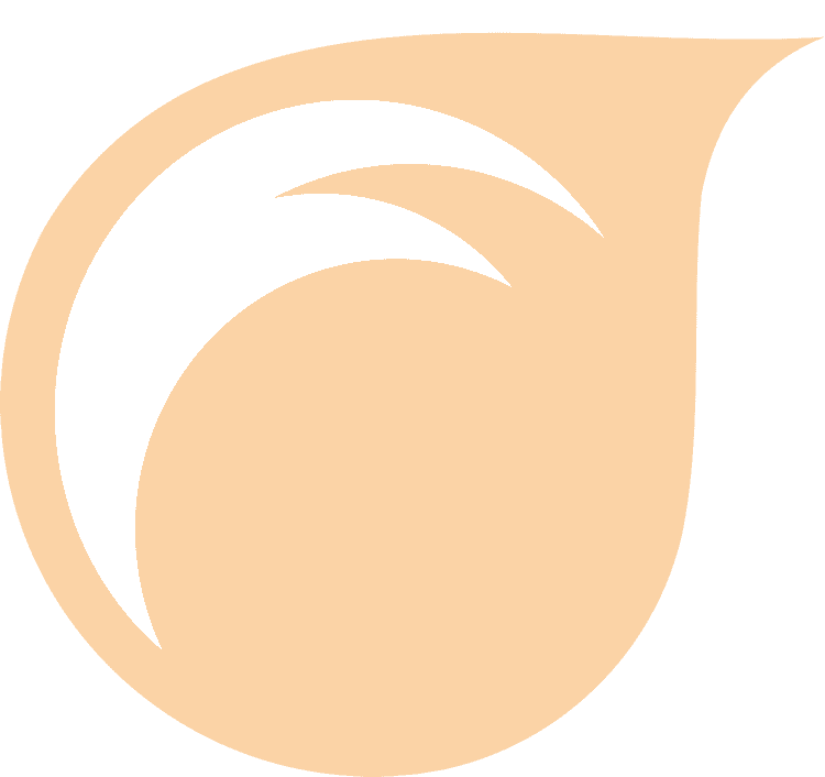 beginning aerial fabric instructional manual