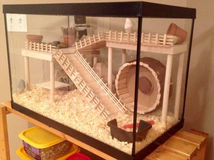 homemade rat cage instructions
