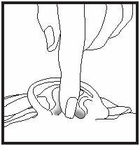 instructions for ciprodex otic drops